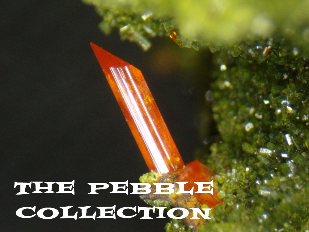 The Pebble Collection